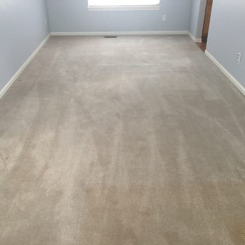 preparing the home for real estate listings, the dry guys, kenosha carpet cleaner