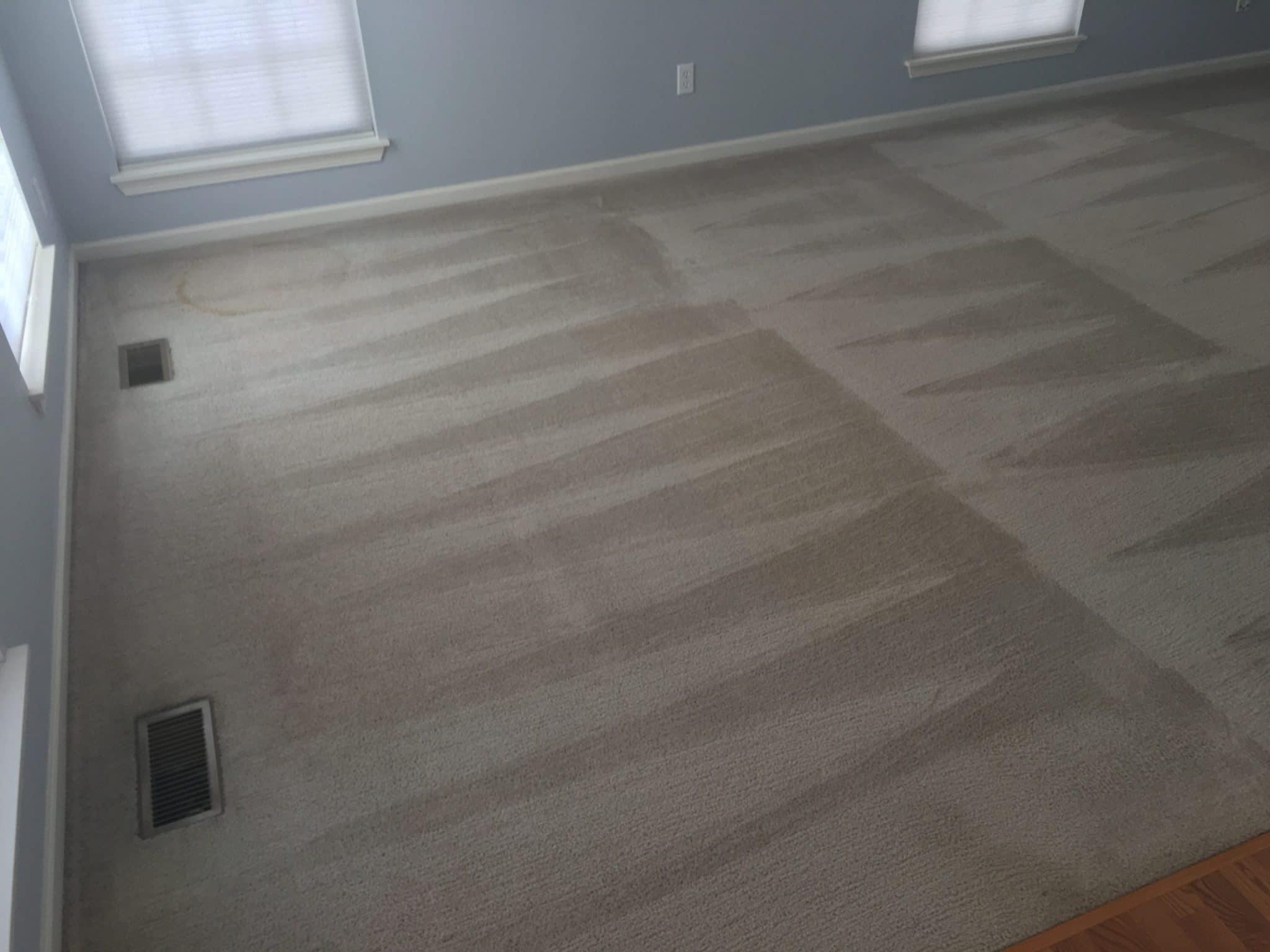 carpet cleaner in kenosha, the dry guys