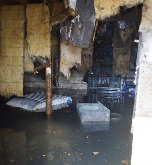 flood remediation in racine, racine flood remediation, flood remediation professionals in racine