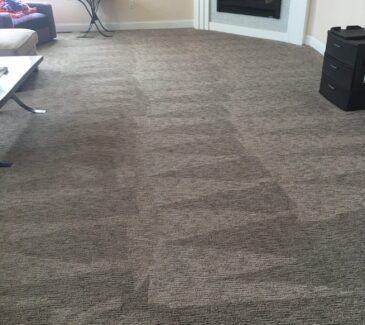 kenosha carpet cleaner, the dry guys, professional carpet cleaning in kenosha