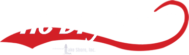 the dry guys, carpet cleaning in kenosha, upholstery cleaning in kenosha