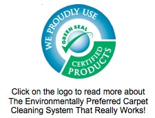 green seal certified, the dry guys, carpet cleaning in kenosha