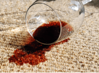 the dry guys, carpet cleaning in kenosha